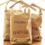 flavor-rice.JPG